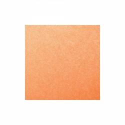 Glimmermist Apricot