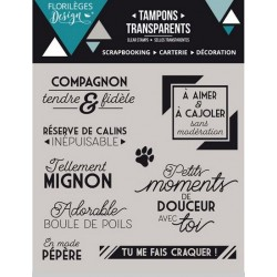 TAMPONS CLEAR COMPAGNON FIDELE