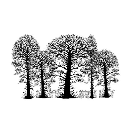 Lavinia Stamps TREES