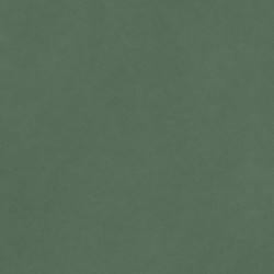 AMERICAN CRAFTS CARDSTOCK 30,5 X 30,5 SMOOTH PINE