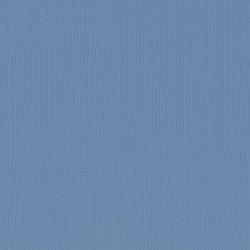 FLORENCE TEXTURE CARDSTOCK STEEL 30,0x30,0cm 216gr