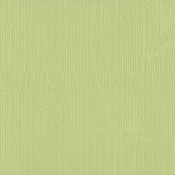 FLORENCE TEXTURE CARDSTOCK ANISE 30,0x30,0cm 216gr
