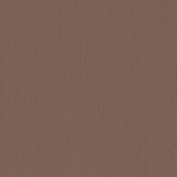 FLORENCE TEXTURE CARDSTOCK BEAR 30,0x30,0cm 216gr