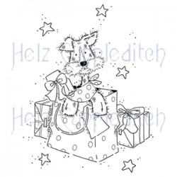 HELZ CUPPLEDITCH SURPRISE, CLEAR STAMP