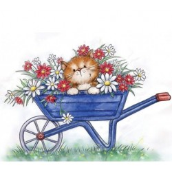 CAT IN WHEELBARROW