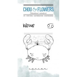CHOU & FLOWERS TAMPONS CLEAR DOUDOU CANCER DANS LA LUNE
